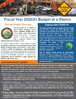 Fiscal Year 2020-21 Budget at a Glance Thumbnail
